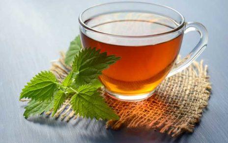 Green Tea Weight Loss Platinum Life